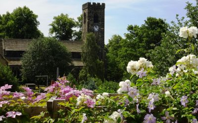 "Burton Open Gardens ""best ever"""